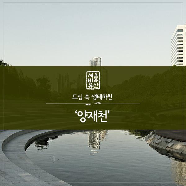 양재천_1