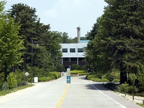 홍릉수목원길