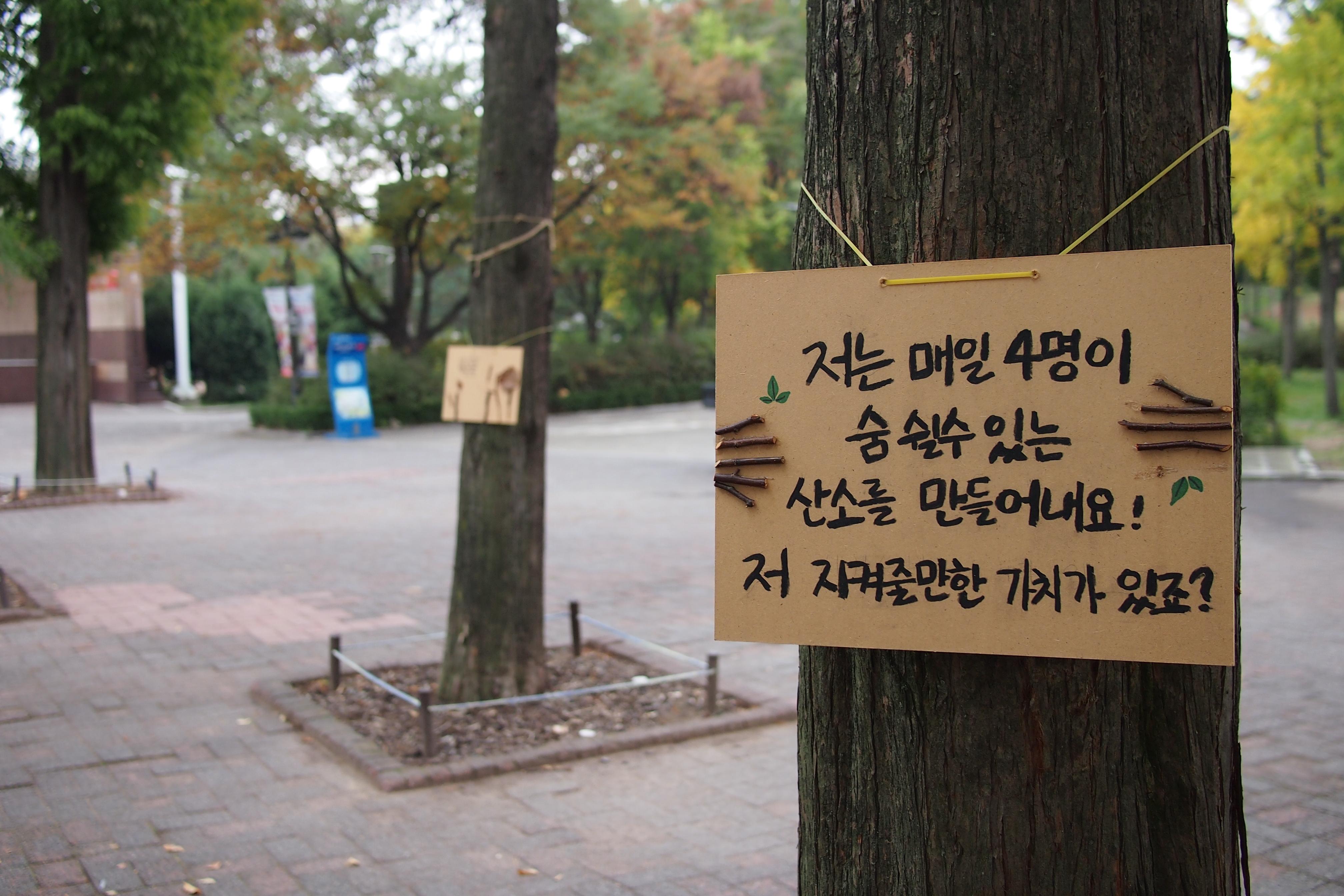 [내가만난미래유산]가족 나들이 천국, 어린이 대공원