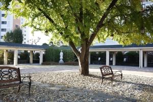 도림동 성당 정원