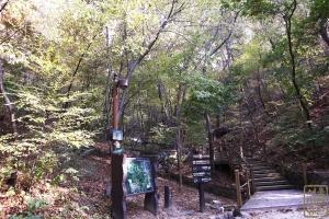 삼청공원 유아숲체험장