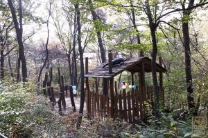 삼청공원 숲속교실2