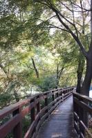 삼청공원 산책로