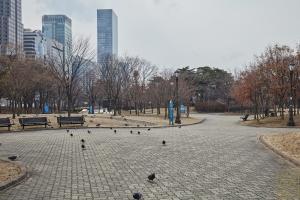 여의도 공원 전경11