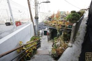 장수마을 계단3