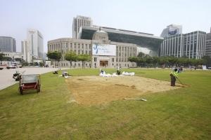서울광장 잔디 재정비