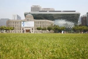 서울광장 지면
