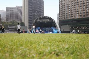 서울광장 잔디밭 시점