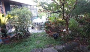 김중업 건축문화의 집 정원(2)