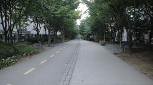 경의선 숲길 공원 산책로1