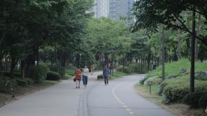 경의선 숲길 공원 산책로4