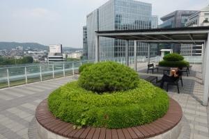 대한민국역사박물관 옥상 정원1